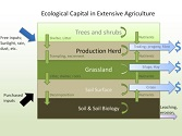 Developing the Ecological Balance Sheet for Agricultural Sustainabiliy